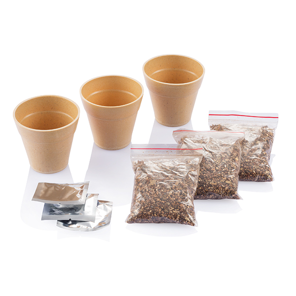 INP269399 Set erbe aromatiche Herb 1